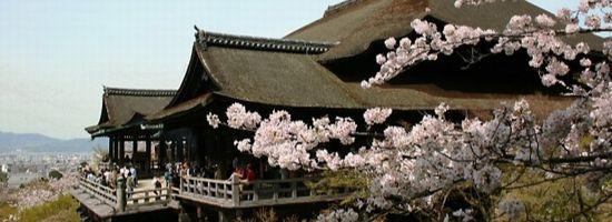 京都浮気傾向